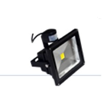 Waterproof PIR LED Flood Light Series