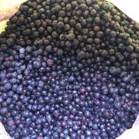 Frozen Blueberry Fruits