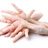 Frozen Whole Chicken, Frozen Chicken Feet