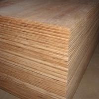 Keruing/Gurjan and Eucalyptus Plywood