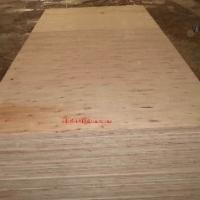 Keruing Or Gurjan Plywood