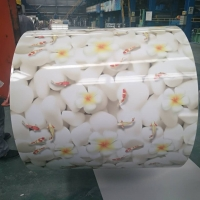 PPGI Coils, Color Coated Steel Coil