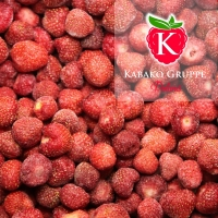 IQF Strawberries Whole With 10 Kg