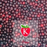 IQF Sour Cherries With Stone