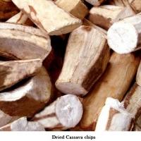 Cassava Dry Chips