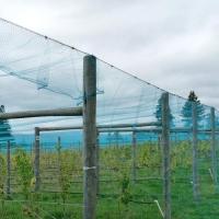 PE Fence Net