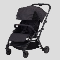 Korean Middleweight Teek Duo Stroller