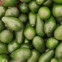 Green Avocado/King Size Avacado