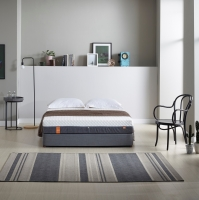 Roll-Packed Memory Form Mattress Premium