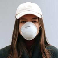 title='N95 Respirator Mask'