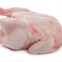 Best Quality Halal Frozen Chicken