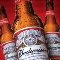 Becks Beer, Budweiser Beer Bottles and Cans