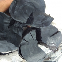 Tamarind Wood Charcoal