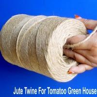 Sell Jute Yarn / Twine