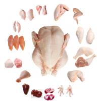 Frozen Poultry Meat