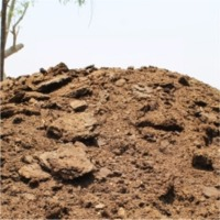 Cow Dung Manure - Fertilizer