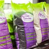 Taiwan White Rice Short Grain Rice 5% Broken