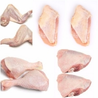 Frozen Halal  Chicken And Parts