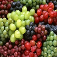 Fresh Grapes Fruits For Sale