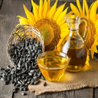 Grade Aa High Quality Refined Sunflower Oil
