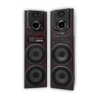Double 8 Inch Active Speaker Mp3, FM Radio, BLT