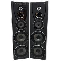 """3 Way Dbl 8"""" Active Speaker"""