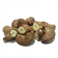 Roasted Cashew Nut With Skin