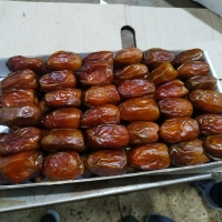 title='Egyptian Dates'