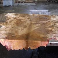 Salted Bovine Leather Cowhide