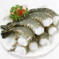 Black Tiger Shrimps : Manufacturers, Suppliers, Wholesalers and