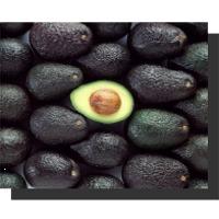 Avocados Fuertes