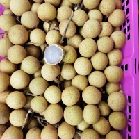 Fresh Longan 3 Kg