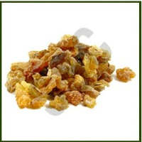 Turmeric Oleo