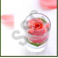 T. Rose