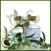 Jasmine & Sandal Body Massage Oil