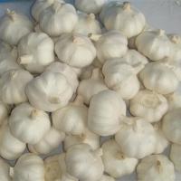 Pure Garlic