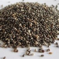 Top Quality Chia Seeds