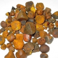 Dried Cow ,Ox Gallstones