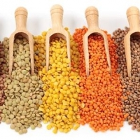 Quality Green, Lentils, Red Lentils