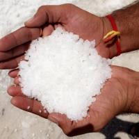 Corase Salt