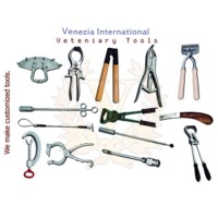 Nose Puch Pliers Instruments