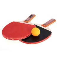 1 Pair Professional Table Tennis