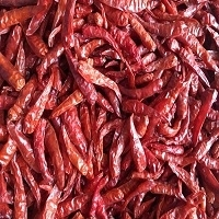 Indian Dry Red Chilies