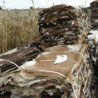 Wet Salted Cattle And Donkey Hides