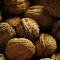 Turkish Walnuts Suppliers, Manufacturers, Wholesalers and Traders