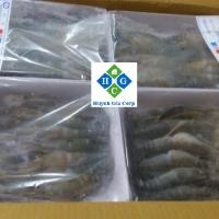 Frozen Scampi Shrimp (Freshwater Shrimp)