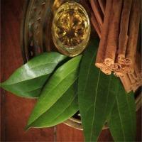 Cinnamon Bark And Leaf Oil