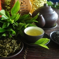Vietnam Best Selling Green Tea