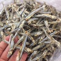 Special Dried Anchovy Fish