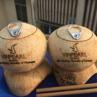 Wholesale Easy Open Coconut For Sale